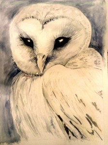 White Owl - wash and ink
