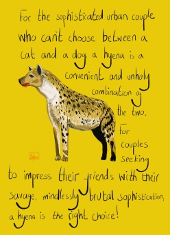Hyena by Robert Clear